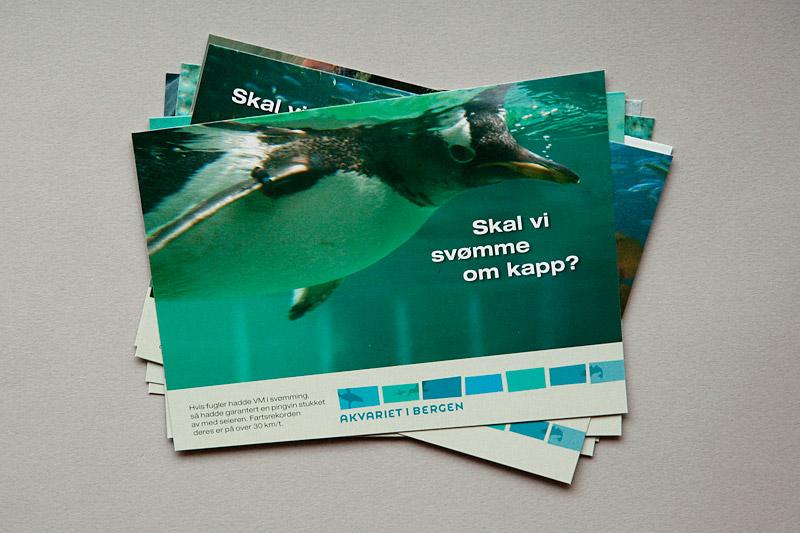 Postcard: Bergen Aquarium