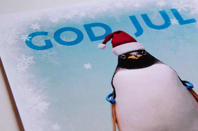 Festive Penguin
