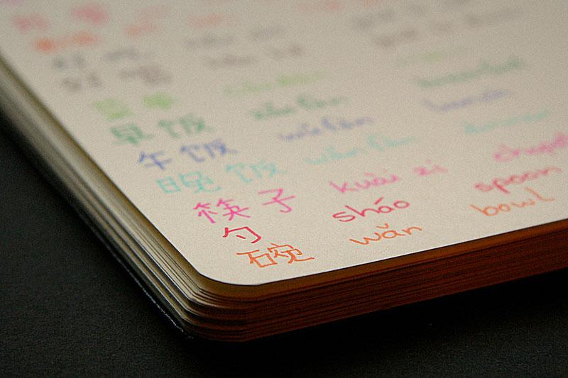 Chinese homework / crayoncrisis.com
