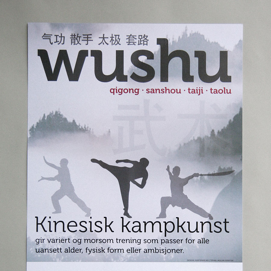Wushu Recruitment poster / crayoncrisis.com